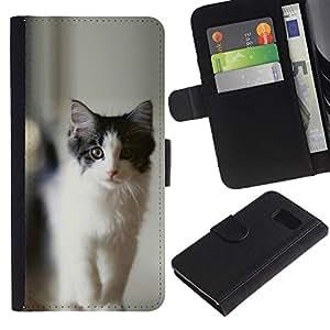 YiPhone /// Tirón de la caja Cartera de cuero con ranuras para tarjetas - NEGRO Y GRIS CAT - Sony Xperia Z3 Compact