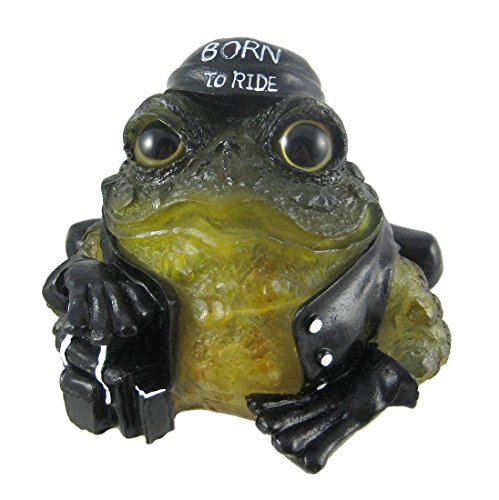 6 Inch Toad Hollow Biker Frog Solar Light Garden Decor (Solar Toad)