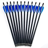 Hunting Crossbow - DMAR Crossbow Arrows Practice Arrows Hunting Archery Carbon Crossbow Bolt Lightweight Carbon Shafts Pack of 12pcs Carbon Spine 500 for Competition/Practice Hunting/Archery Accessories- 17 Inches