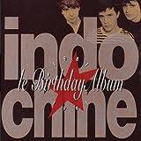 Le Birthday Album 1981 - 1991 by INDOCHINE (1991-10-28)