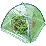 1 - Folding Greenhouse, Fast, easy assembly, Ideal for patios, decks & balconies of any size, Q1094