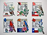 All 50 States Plus Washington D.C. Montage Fridge Magnets