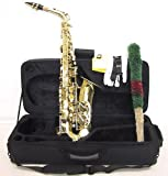 SKY Student Eb Alto Saxophone with Case and Accessories
