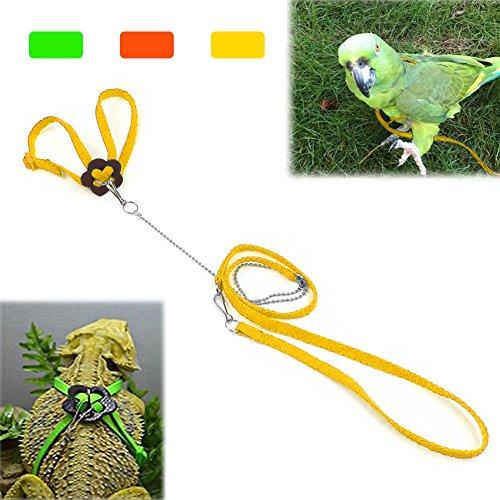 Mokook Bird Harness and Leash for Parrot African Grey Cockatoo Macaw Ringneck Parakeet Cockatiel, Adjustable and Bite Resistant Design ()