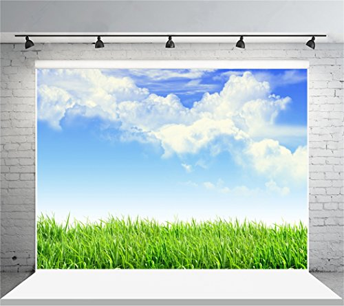 Leyiyi 6x4ft Spring Grassland Photography Background Gardening Plant Meadow Sky Cloud Light Spot North Prairie Backdrop Nature View Outdoor Activity Kids Birthday Photo Portrait Vinyl Studio Prop