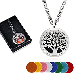 AblerV Aromatherapy Essential Oil Diffuser Necklace, Elegant Premium Perfume Locket Nacklace Hypo-Allergenic Surgical Grade Stainless 24 Inch Chain with Free 8 Felt Pads, Perfect Gift Box