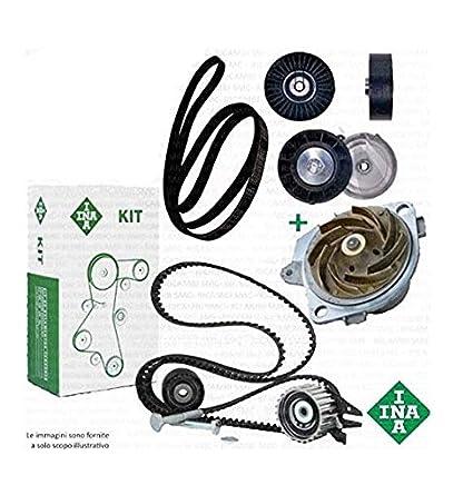 Kit distribución + Bomba + Correa Software: Amazon.es: Coche y moto