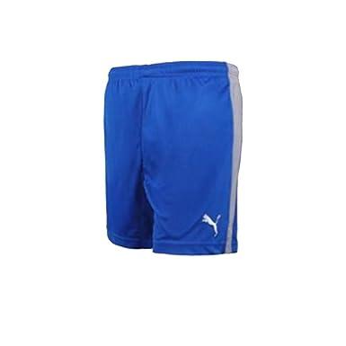 5c3657dafc Puma Mens Shorts Blue Swimming Shorts Mesh Lined Small, Medium, XL, XXL  (Small): Amazon.co.uk: Clothing