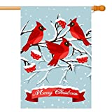 GDF Studio Birds Red Cardinal in Snow House Flag, Double-Sided, 100% All-Weather Polyester, Winter/Christmas Yard Flag to Bright Up Your House 28″ x 40″