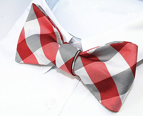 Alizeal Carreaux Mouchoir à rouge blanc De amp; Rayures Papillon Pois à à Lot Nœud Homme Jacquard Pour Paisley wvxSqrwzX