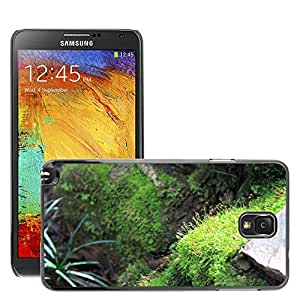 Hot Style Cell Phone PC Hard Case Cover // M00310043 Moss Stairs Natural // Samsung Galaxy Note 3 III N9000 N9002 N9005