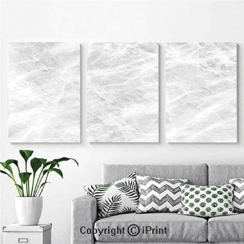 Modern Salon Theme Mural Abstract Soft Pastel Toned Onyx Stone Background with Grunge Effects Image Decorative Painting Canvas Wall Art for Home Decor 24x36inches 3pcs/Set, Light Grey White