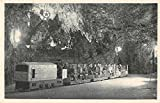 Postojna Slovenia Postojna Cave Train Antique Postcard J7139
