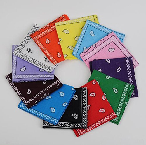 BSLINO One Dozen/12pcs Assorted Bandanas 22X22 Inch 100% Cotton Novelty Double Sided Print Paisley Cowboy Bandana Party Favor Scarf Headband Handkerchiefs by BSLINO (Image #4)