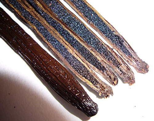 Madagascar Vanilla Beans. Whole Grade A Vanilla Pods for Vanilla Extract and Baking (10 Beans) by Vanilla Bean Kings (Image #4)