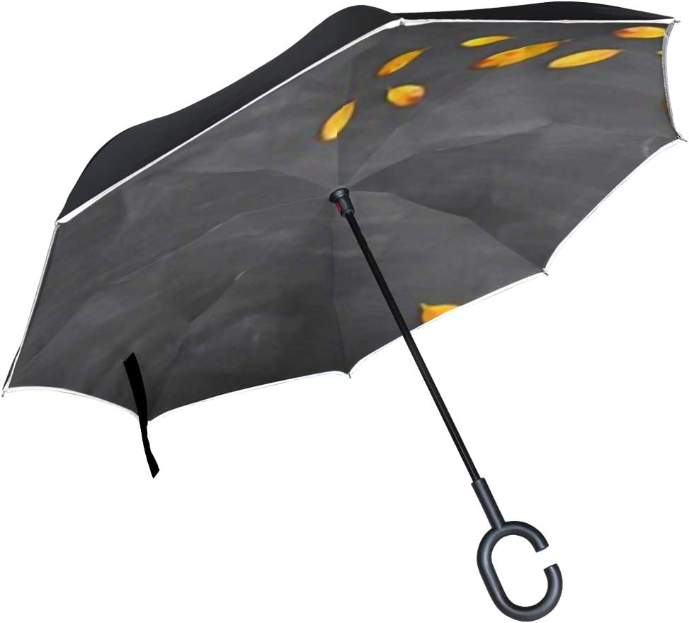 Double Layer Inverted Inverted Umbrella Is Light And Sturdy Back School Concept Top View Banner Reverse Umbrella And Windproof Umbrella Edge Night Re