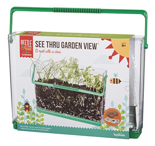 Beetle & Bee See Thru Garden View by Toysmith, Root Viewer - DIY Arts & Crafts Gardening for Kids & Teens, Boys & Girls (Childrens Seed Kit)