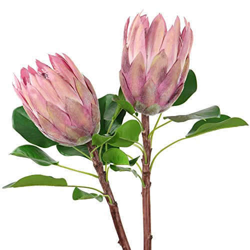 Rinlong Artificial Protea Cynaroides Silk Flower for Floral Arrangements Home Party Wedding Decor (2pcs Pale Mauve)