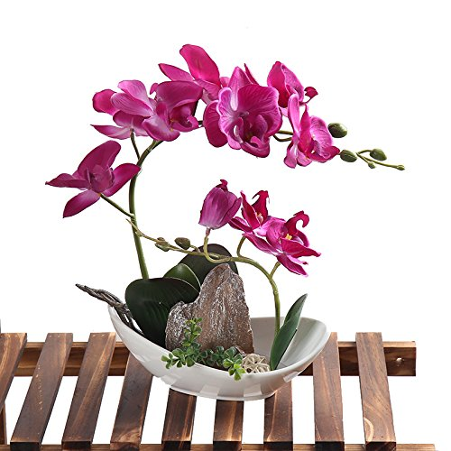 Leeman Artificial Lifelike Real Touch Flowers Arrangement Phalaenopsis Bonsai Orchid Miniascape Home Decoration Holiday Gift (Pink 530) (Bright Yellow Tulip)
