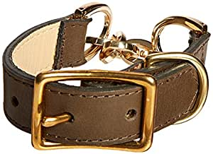 Chain and Leather Dog Collar, Small Size 9-11, Green Leather with Gold Chain