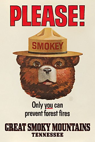 Lantern Press Great Smoky Mountains, Tennessee - Smokey Bear - Vintage Poster (9x12 Art Print, Wall Decor Travel Poster)