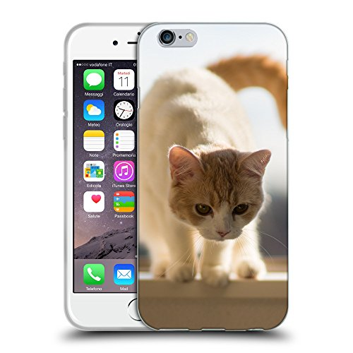 Just Phone Cases Coque de Protection TPU Silicone Case pour // V00004270 chaton Rouge se prépare pour un saut // Apple iPhone 6 4.7""