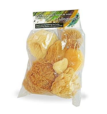Natural Sea & Synthetic Sponges for Artists Assorted Sizes 7pc Value Pack: Great for Art, Painting, Ceramics, Crafts, Clay Pottery & More by Lullingworth
