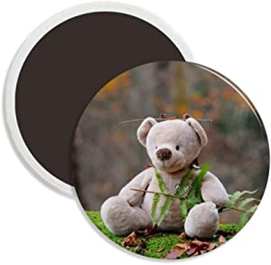 Teddy Bear Forestry Science Nature Round Ceramics Fridge Magnet Keepsake Decoration
