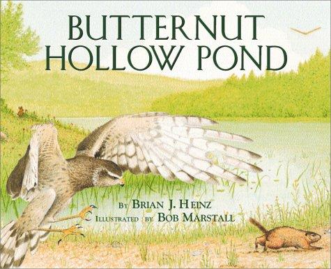 Butternut Hollow Pond by Brand: Millbrook Press