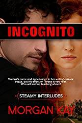 Incognito: Dating the Enemy (Steamy Interludes Book 6)