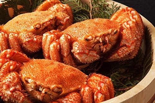 最高ランク 毛ガニ 500g 3尾セットの堅蟹をボイルし急速冷凍!極上毛ガニ! お中元 敬老の日 ギフト 誕生日 特大 国内産 北海道 特大 ボイル 冷凍 かに カニ 蟹 けがに カニ味噌 お取り寄せ 海鮮 北海道かに