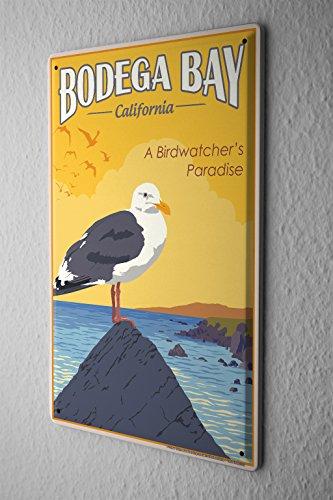 "Tin Sign World Tour Bodega Bay California birders paradise gulls Metal Plate 8X12"""