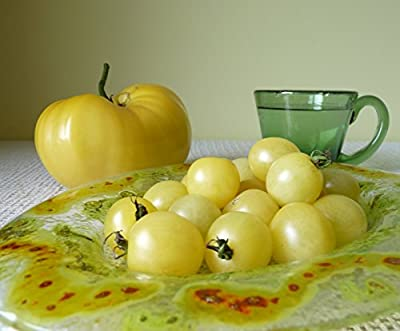 New*whitest Cherry Tomato -25 Seeds*ez Grow*rare* #1199