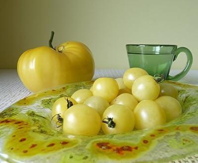 New*whitest Cherry Tomato -25 Seeds*ez Grow*rare* #1199
