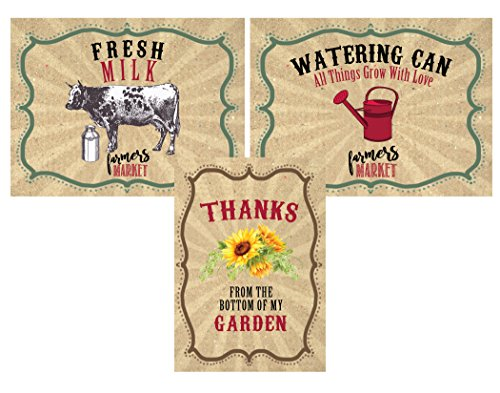Silly Goose Gifts Farmers Market Themed Party Invitations Supply Decor (Table Decor) ()