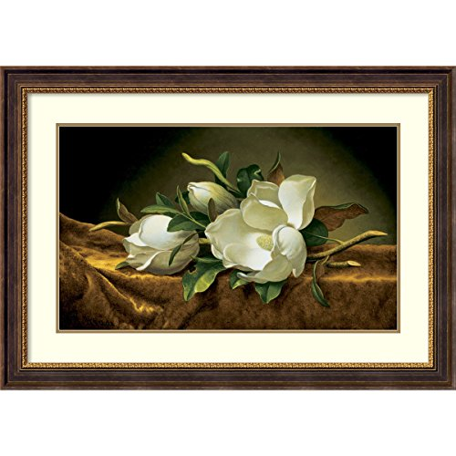 Martin Johnson Heade Magnolia (Framed Art Print, Magnolias on Gold Velvet Cloth' by Martin Johnson Heade: Outer Size 43 x 30)