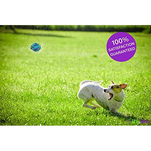 70%OFF CHEW-STOP-DENTAL Puppy Dog Pet Rope Toys Stops Small Dogs and Teething Puppies from Destroying Your Stuff (Set of 4)