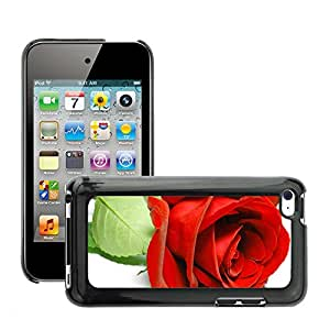 Super Stellar Slim PC Hard Case Cover Skin Armor Shell Protection // M00048767 beautiful rose white aero // Apple iPod Touch 4 4G 4th