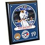 Steiner Sports MLB Toronto Blue Jays Jose Bautista Plaque with Game Used Dirt from Rogers Centre, 8-Inch x 10-Inch, Navy