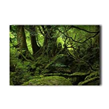 "Forest Green Trees Poster Customizable Humor 20""x 30"" Poster Custom Product"