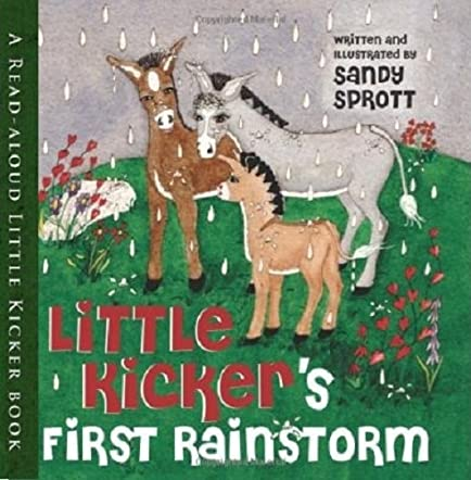 Little Kicker's First Rainstorm
