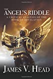 img - for The Angel s Riddle: A Critical Analysis of the Book of Revelation book / textbook / text book