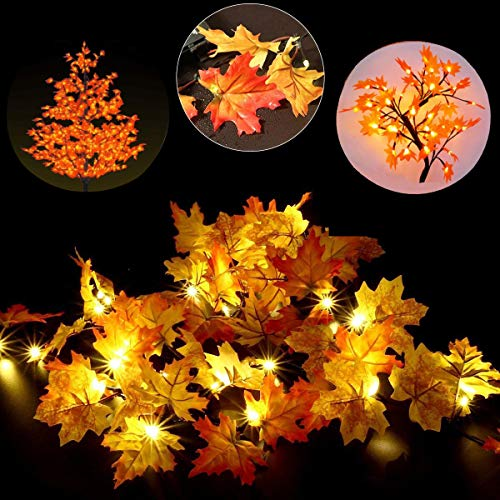 Outdoor Fall String Lights in US - 7