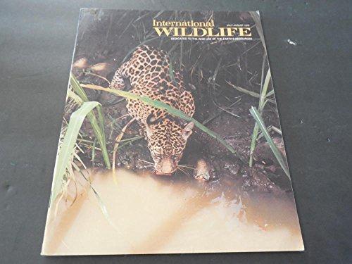 (International Wildlife Jul / Aug 1979, Sea Turtle, Galapagos Hawk )