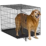 MidWest 1542 iCrate Single-Door Pet Crate 42-By-28-By-30-Inch