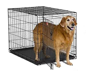 """MidWest 42"""" iCrate Folding Metal Dog Crate w/ Divider Panel, Floor Protecting """"Roller"""" Feet & Leak-Proof Plastic Tray; 42L x 30W x 28H Inches, Large Dog Breed"""