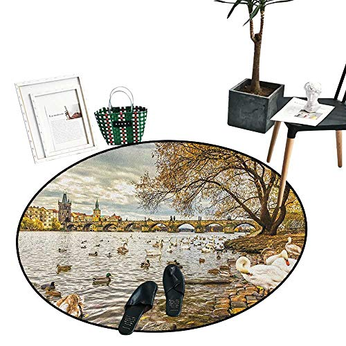 Furniture Riverside Cape (Landscape Round Small Door Mat Prague Charles Bridge and Old Town Czech Republic Riverside Scenic View with Swans Perfect for Any Room, Floor Carpet (47