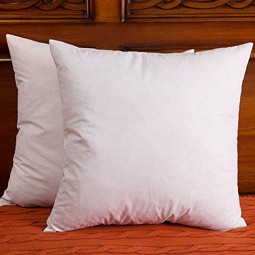 Set of 2, 20x20 Inch, Down and Feather Throw Pillow Insert, The Fabric is Cotton
