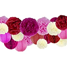 """VIDAL CRAFTS 30 Pcs Tissue Paper Pom Poms Kit (14"""", 10"""", 8"""", 6""""), Paper Flowers, Paper Lanterns and Honeycomb Balls, for Wedding, Baby Shower, Bachelorette Parties (red, fuchsia, pink, ivory)"""