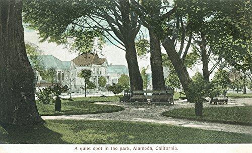 (Alameda, California - City Park View (24x36 Fine Art Giclee Gallery Print, Home Wall Decor Artwork Poster))
